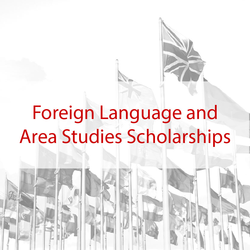 Foreign Language and Area Studies Scholarships