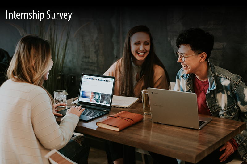 Internship Survey